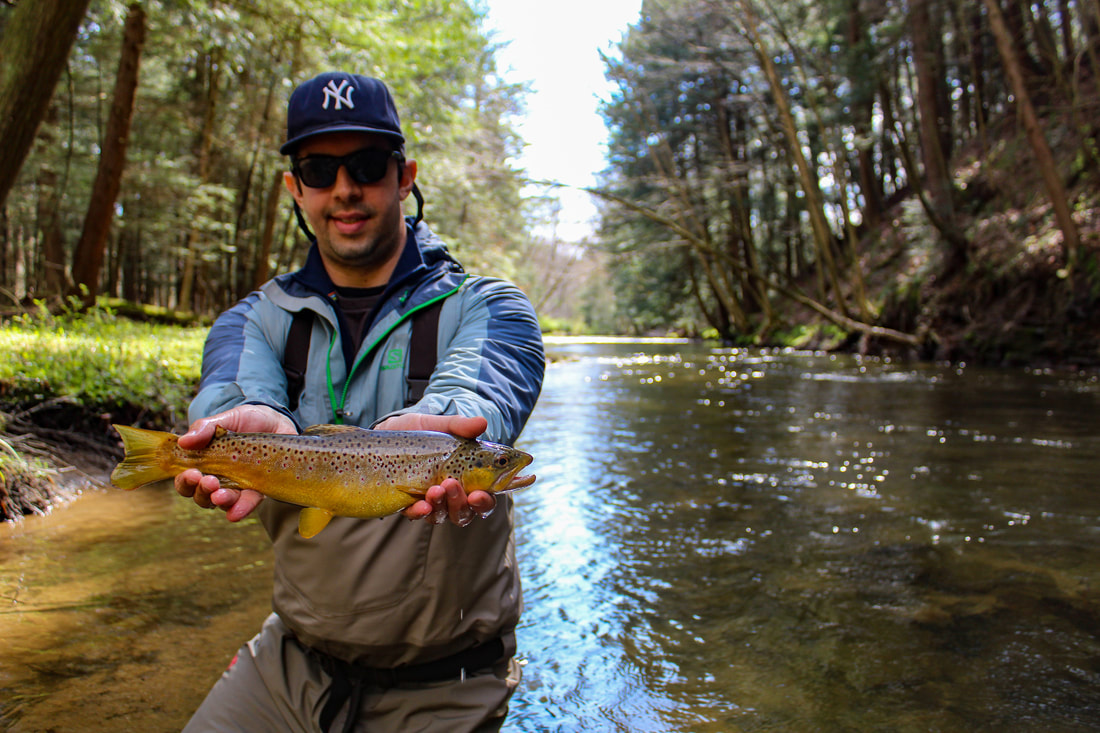 Fly fishing for trout in May and June.