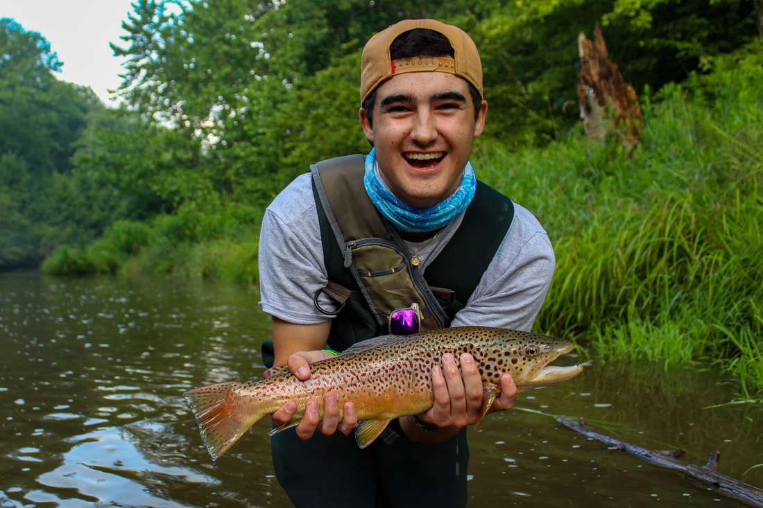 Brown trout fishing in PA.